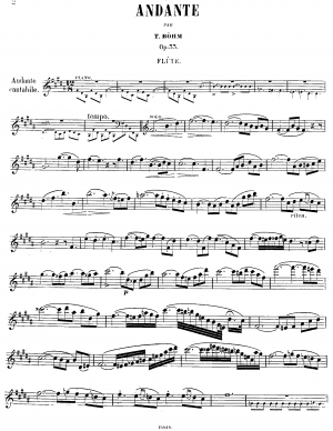 Andante for Flute and Piano