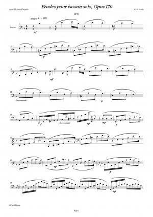 Etudes for Bassoon solo