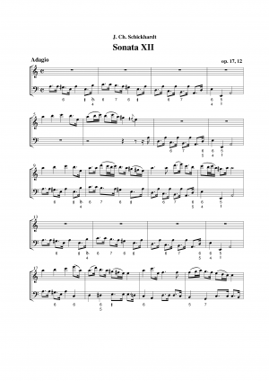 12 Sonatas for Flute and Basso Continuo
