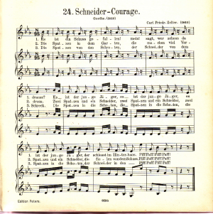 Schneider-Courage