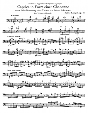 Caprice in the Form of a Chaconne after a Theme by Schumann, Op.43